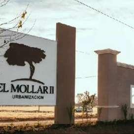 En venta Mollar II