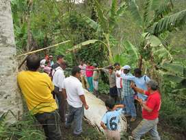 Promotor(a) de Campo / Coordinador(a) de Grupos de Voluntarios para ONG de Desarrollo Rural