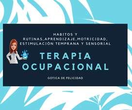 T Ocupacional  Bogotá