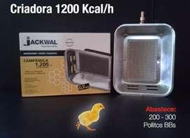 Calefactor a gas pecuario 1200 kcal 100 aves