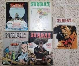 Sunday Revista Sobre Estudios E Investigación De Historieta