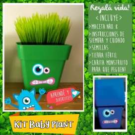 "Kit de siembra completo ""Baby Plant"""