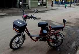 Bicicleta Eléctrica para dos personas.