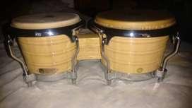 Bongo LP profesional generación II