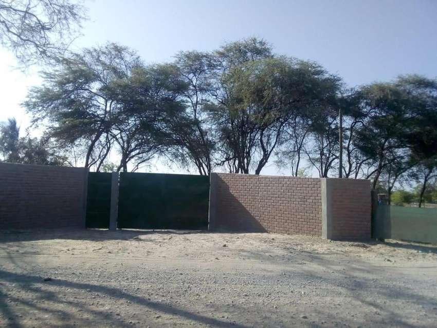 Terreno  en Algarrobo Tambogrande 7.8 Ha 0