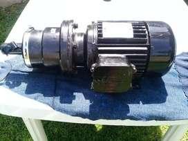 Motoreductor Trifasico 0,75hp