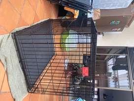 Guacal Jaula Corral Perro Grande