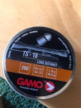Gamo Ts - 18 long distance