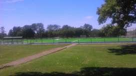 mantenimiento de campos deportivos
