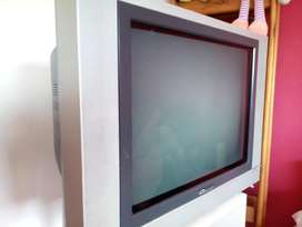 Televisor Bgh Feelnology 21''