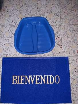 Recipientes para desinfectar zapatos