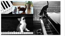 Clases de música, teoria musical, piano, guitarra y canto.