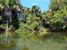vendo terreno de 83 hectáreas en la selva del peru fundo marita ,tiene  mucha variedad de arboles, riachuelos,animales