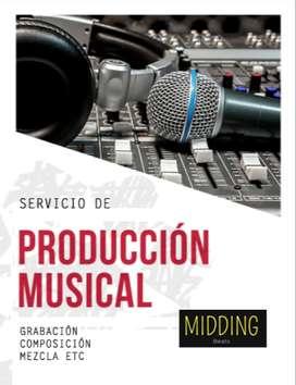 Producción musical, grabación de canciones, mezcla, composición
