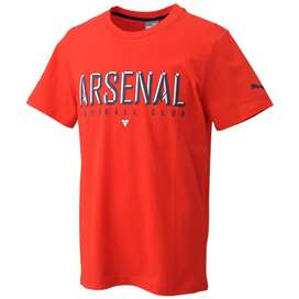 REMERA PUMA ARSENAL FC FAN FUTBOL INGLATERRA