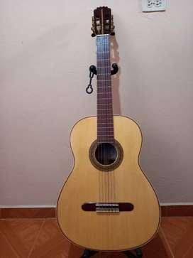 Guitarra acústicas