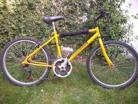 Bicicleta Rodado 24 Mar Del Plata