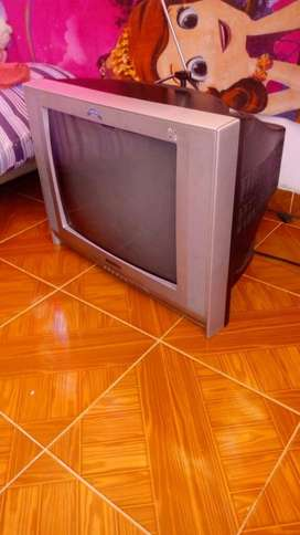 Tv en Perfecto Estado