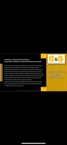 Asesoria juridica recuperacion cartera , Diagnostico empresarial .