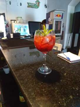 Servicio de bartender profesional