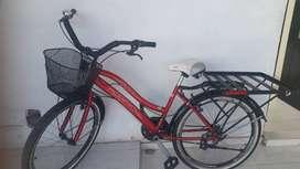 Bicicleta todo terreno, rojo con negro. Cesta y plancha para carga