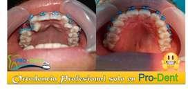 Odontologo/a General