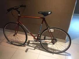 Bici rodado 28
