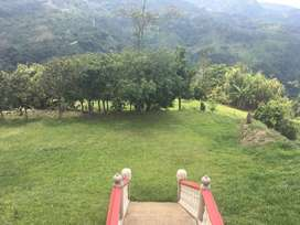 Alquilo casa campestre en la Vega Cundinamarca