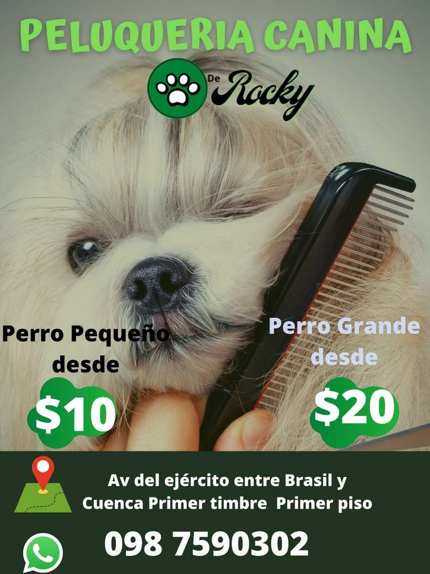 Servicio de Peluqueria Canina a domicilio 0