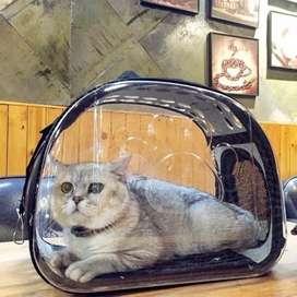 Maletas para cargar gatos