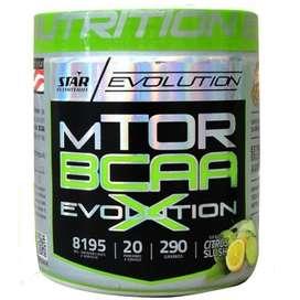 Aminoacidos Mtor Evolution Star N 290 Gr