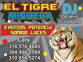 MINITECA EL TIGRE DJ