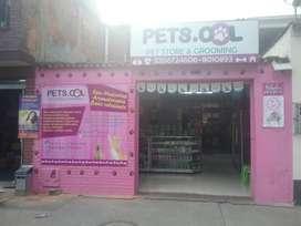 Vendo pet shop con peluqueria canina y fabrica distribuidora de accesorios para mascotas con marca propia