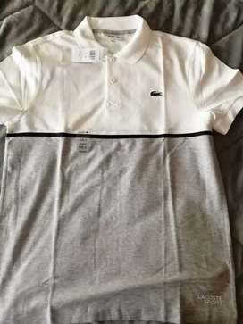 Camisa polo shirt lacoste