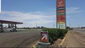 ALQUILO GRIFO PANAMERICANA SUR KM.220 PISCO