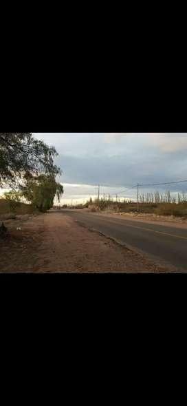 VENDO O PERMUTO LOTES CAMINO A VALLE GRANDE