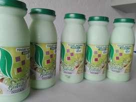 venta de yogurt al mayor