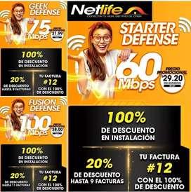 Internet de NETLIFE