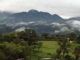 Hacienda en venta con casa nueva, en la vía Quito-Lago. invernaderos, ganado lechero, potreros.