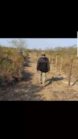Vendo 33 hectareas en la fragua s. Del. Estero