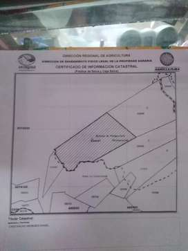 Terreno agrícola, Distrito de curimana