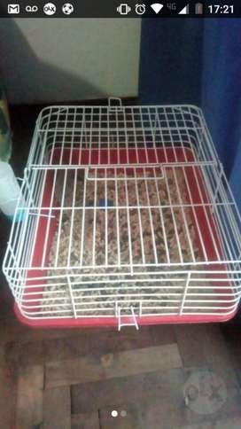Jaula para Conejos 4 Meses de Uso