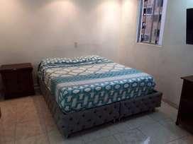 Apartamento amoblado en los colores ID245