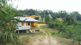 VENDO HACIENDA 102 HAS - PALMITO EN PRODUCCIÓN - PEDRO VICENTE MALDONADO