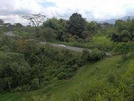 se vende hermoso lote plano de 11, 000 metros sobre la via que va al lembo enseguida de el condominio las margaritas