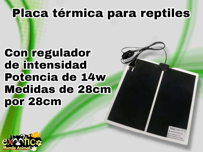 Placa térmica para reptiles