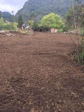 Hermosa Finca 4 hectareas chipaque cundinmarca