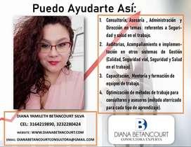 Asesoría , consultoria en Sistemas de Gestión