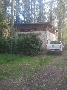 Cabaña en el bosque Peralta Ramos