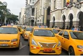 Chófer para taxi amarillo